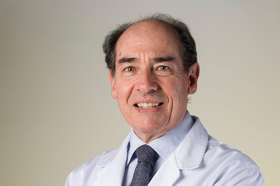 Dr. Vicente Molina Morales